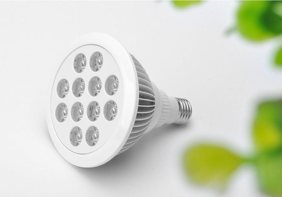 choosing led light bulbs